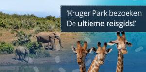 Tips bezoeken Kruger Park