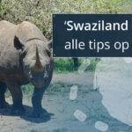 Swaziland thumbnail